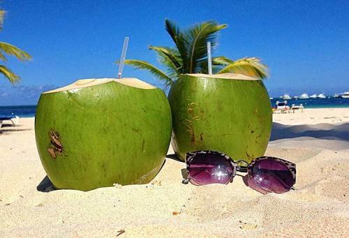 Dominican-Republic-coconut
