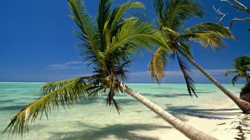 wallpapers-desktop-beach-republic-punta-dominican-indies-backgrounds-background-wallpaper